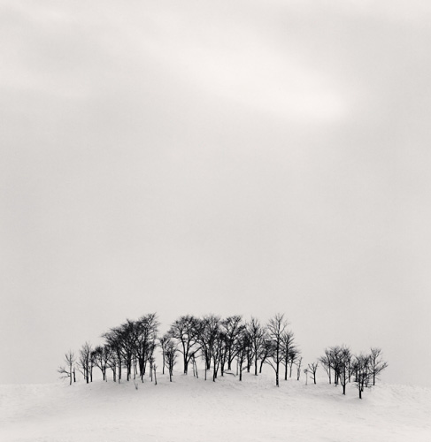 Afternoon Light - Michael Kenna - 'Hokkaido'