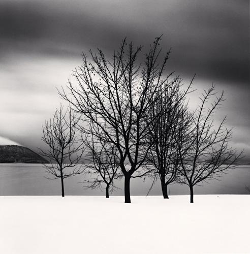 Five Trees - Michael Kenna - 'Hokkaido'