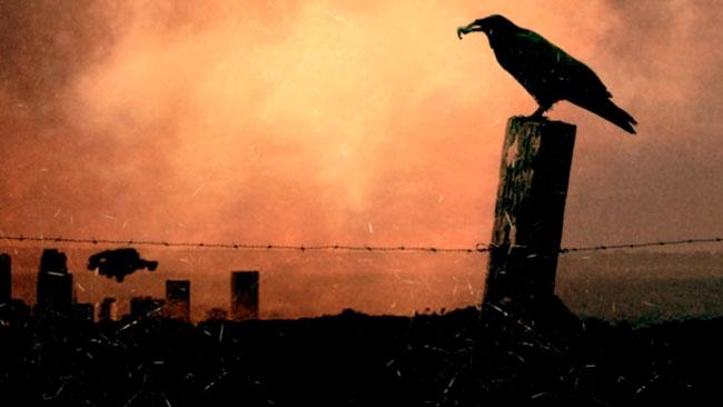 Ricardo de Montreuil - 'The Raven'